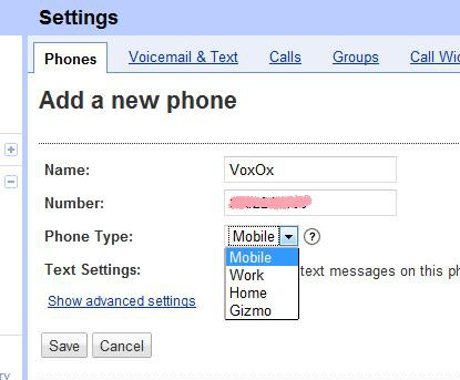 Google Voice Settings Screenshot